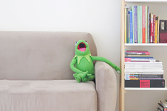 a kermit the frog toy laughing